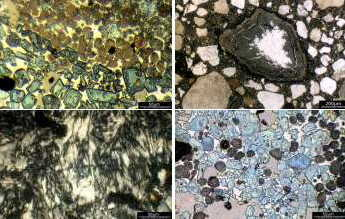 Block of four thumbnail microscope images