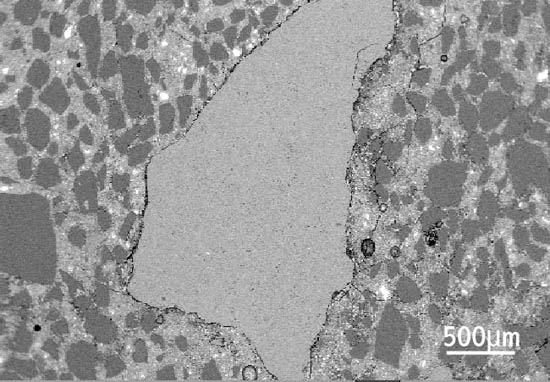 Figure 3 Delayed ettringite formation: scanning electron microscope image of limestone aggregate particle.