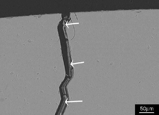SEM image showing a detail of the crack in Figure 2; the crack contains alkali silicate gel (arrowed).